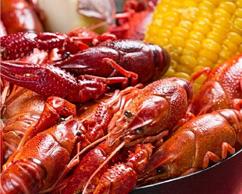 Boiled Crawfish, 10 lbs or more