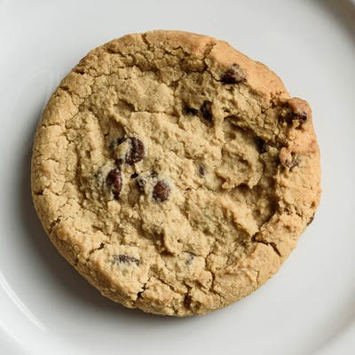 Freshly Baked Chocolate Chip Cookie