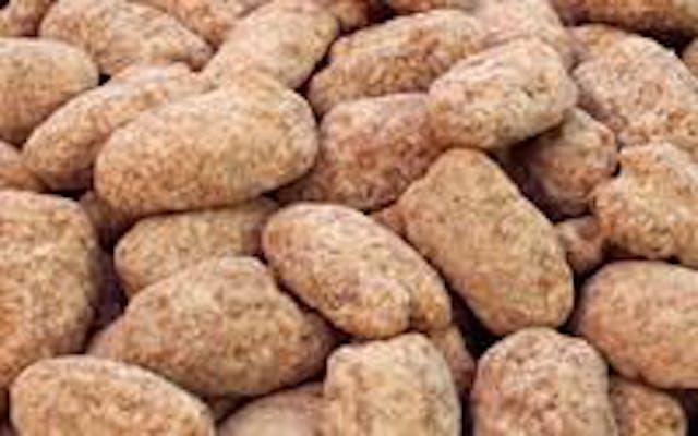 Crunchy Pecan Praline