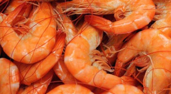 1/2 Pound Boiled Shrimp