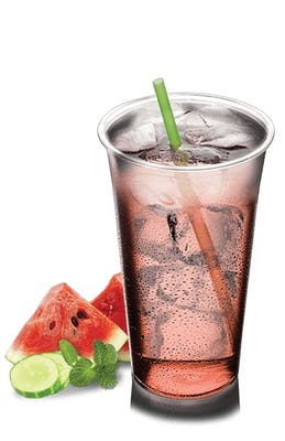 Watermelon Cucumber Mint Refresher
