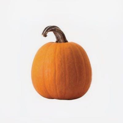 Sarah's Homegrown - Carving Pumpkin - Med/Large - (1 each, 14-18 lb.)