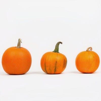 Frey Farms Pie Pumpkin - Carving Pumpkin - Small - (1 each, 1.7-2.8 lb.)