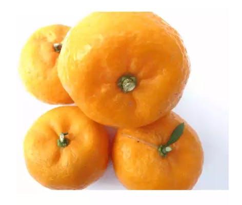 Cara Cara Oranges (1 ct.)