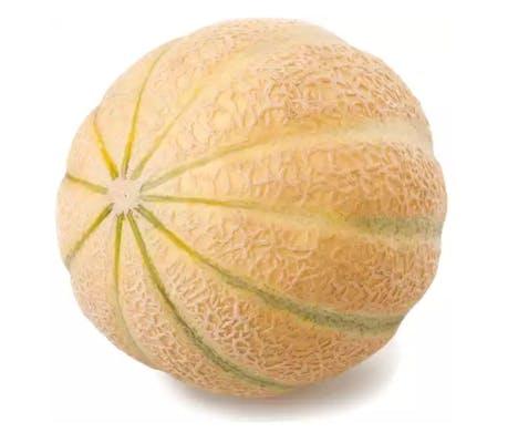 Honeydew Melon (1 ct.)