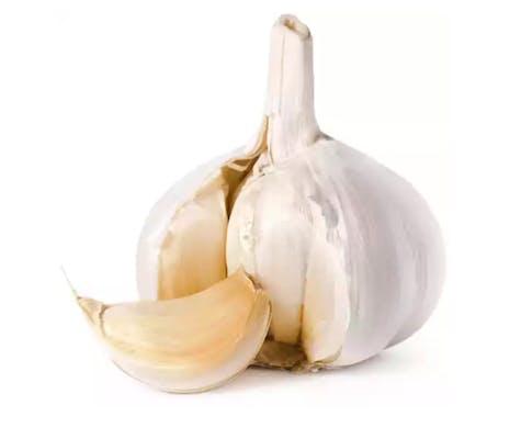 Regular Garlic Bulb (1 ct.)