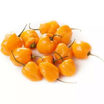 Hotties Habanero Chilies (4 oz.)
