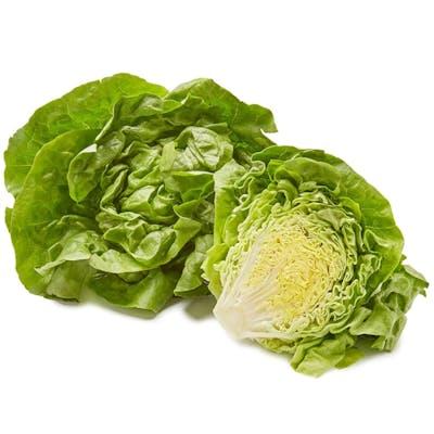 Butter Lettuce (1 ct.)