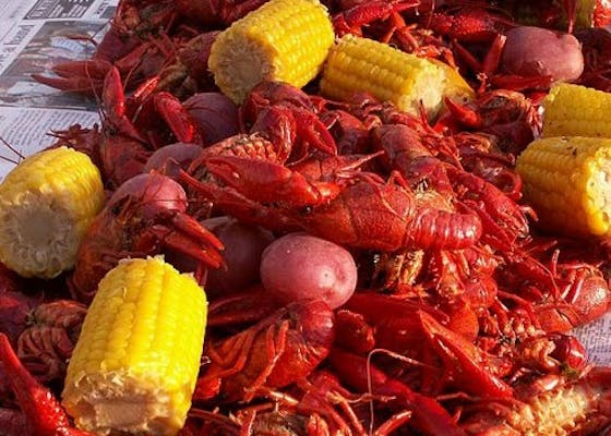 Boiled Crawfish (10 lbs.)- Noon to 7:30 pm