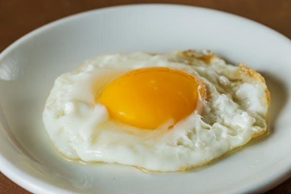 E1. Egg