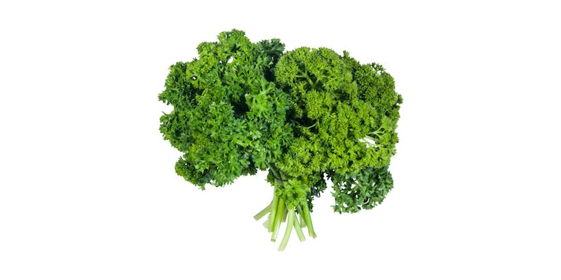 (1 ct.) Parsley Bunch