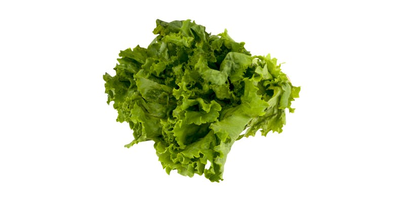 (1 ct.) Green Leaf Lettuce