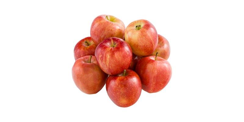 Gala Apple (1 lb.)