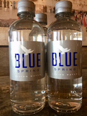 Bottled Water (Blue Spring)