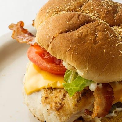 Chicken Bacon Cheese Sandwich