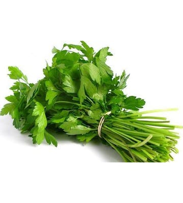 (1 ct.) Cilantro Bunch