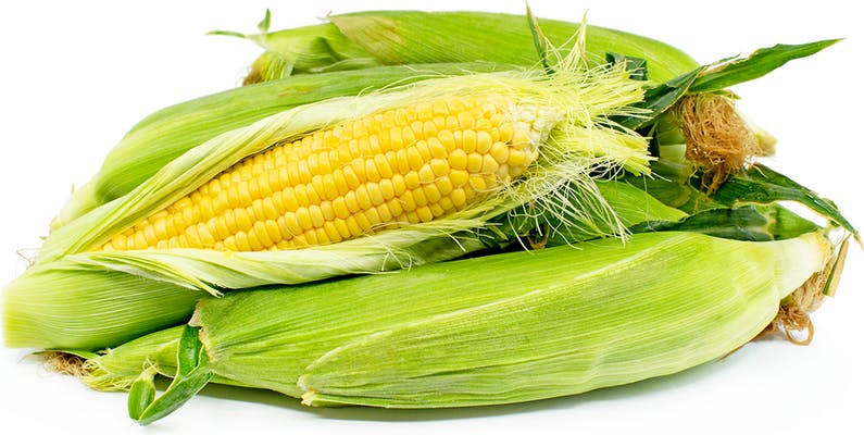 (1 ct.) Yellow Corn
