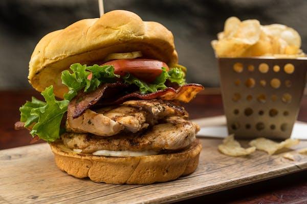 Aquarium Grilled Chicken Sandwich