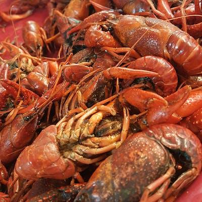 (3 lb.) Crawfish