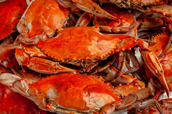 (6) Boiled Blue Crabs