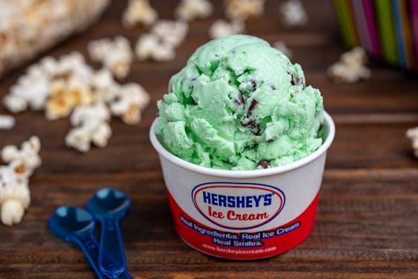 Green Mint Chip Ice Cream