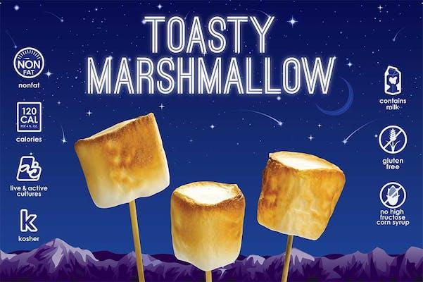 Toasty Marshmallow Fro-Yo